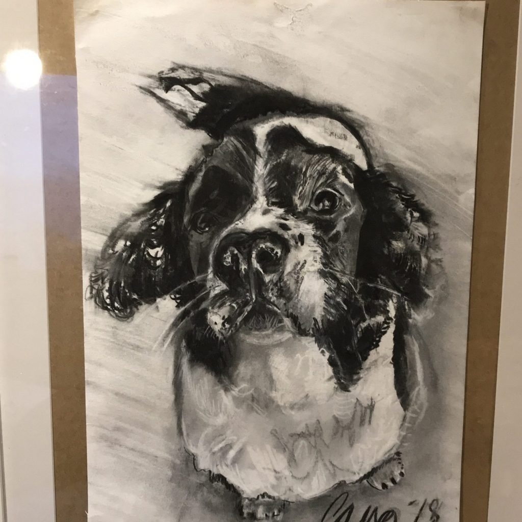 Charcoal drawing of a super cute dog