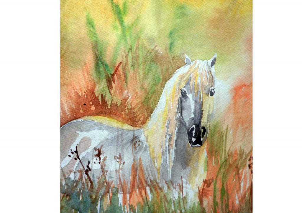 Horse in Long Grass -35cm x 25cm / 2011