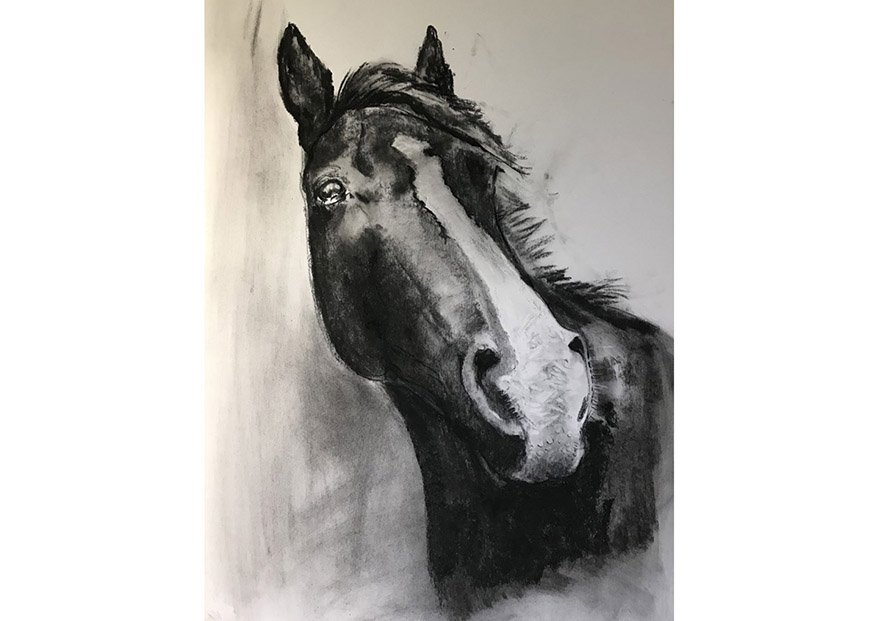 Molly /Charcoal on Paper /70 cm x 60 cm /In private collection
